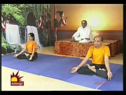 Dr  Asana Andiappan Kalaignar Tv Yoga Program 29 11 2013