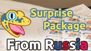 getlinkyoutube.com-The BEST Mail EVER - SURPRISE package from Russia!!!