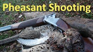 getlinkyoutube.com-Pheasant Shooting at the Paddock