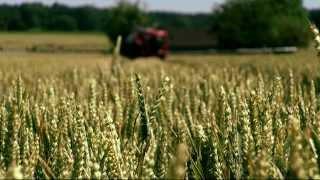 HORSCH Leeb PT 270 - Selbstfahrende Feldspritze zum Pflanzenschutz