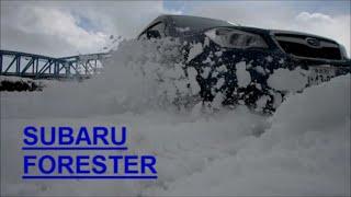 getlinkyoutube.com-雪で遊んでみた 「スバル フォレスター」