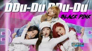 [HOT] BLACKPINK  - DDU-DU DDU-DU , 블랙핑크 - 뚜두뚜두   Show Music core 20180630 width=