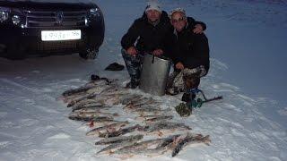 getlinkyoutube.com-Зимняя рыбалка на щуку на жерлицы.