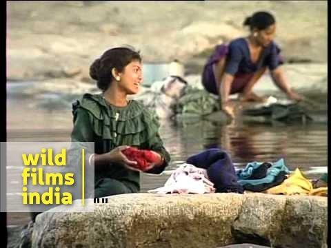 Maldhari women wash clothes by the river