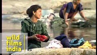 getlinkyoutube.com-Maldhari women wash clothes by the river