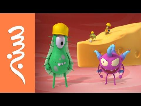 #سنبر - البكتيريا