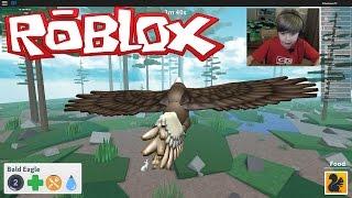 getlinkyoutube.com-Roblox Bird Simulator - I'M A BALD EAGLE!!!! | KID GAMING