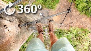 360º Climbing a 75 Meter Tree with No Rope - Pemberton - Australia 4K