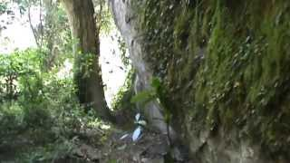getlinkyoutube.com-casa de pedra de Itaoca