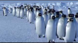 getlinkyoutube.com-Vangelis - Theme from Antarctica