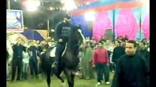 getlinkyoutube.com-الفنان أحمد السقا يرقص بالحصان فى حفل مزرعة المني مصر للخيول العربية حمادة صلاح 2