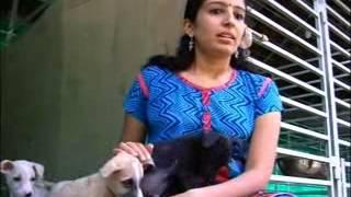getlinkyoutube.com-PAWS Thrissur ACV news