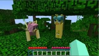 getlinkyoutube.com-Mine Little Pony Episode 1 Minecraft Lets Play (Knight Ferro, Toxic, Rainbro Dash)