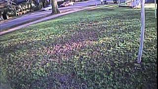 getlinkyoutube.com-Live Feed Armattan Mini Tricopter SpeedRacer