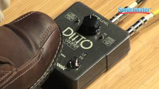 getlinkyoutube.com-Tech Tip: Ditto X2 Current Loop vs. Backing Track