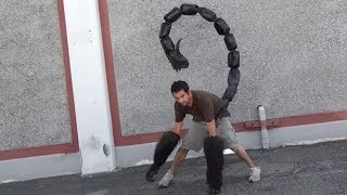 getlinkyoutube.com-Percy Jackson Sea of Monsters Manticore Tail Test