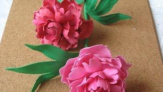 getlinkyoutube.com-Цветы из фоамирана - пион. Мастер класс часть 1