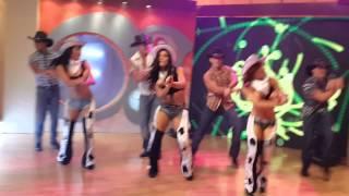 getlinkyoutube.com-El caballito de palo -  Grupo Latinos