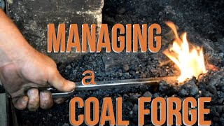 HOW TO: Managing Coal Forge