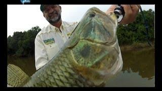 getlinkyoutube.com-Pescaria de Traíras com Spinner Bait da Deconto