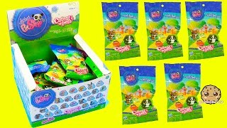 getlinkyoutube.com-Littlest Pet Shop Cutest Pets Bobbleheads LPS Surprise Blind Bag Box - Cookieswirlc
