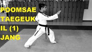 TAEGEUK IL JANG (1) WTF POOMSAE // Lima TaeKwonDo Yellow Belt Form