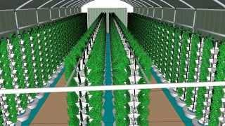getlinkyoutube.com-Vortex Aquaponics - Urban Farms - 70 ft Aquaponics Hoop House