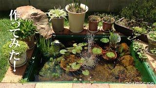 getlinkyoutube.com-ビオトープの池をトロ舟とレンガで作ってみた
