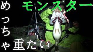 getlinkyoutube.com-バス釣りTOPで超デカバスGET topwater bass fishing in Japan Lake Biwa