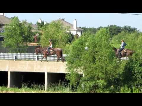 Spoon, Bavar, Bandit - 6/22/12 trail ride - loping along ditch, crossing bridge - Valley View Ranch