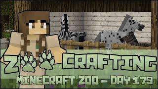 getlinkyoutube.com-Zoo Crafting! Birth of a Zorse Foal!! - Episode #179 | Season 2