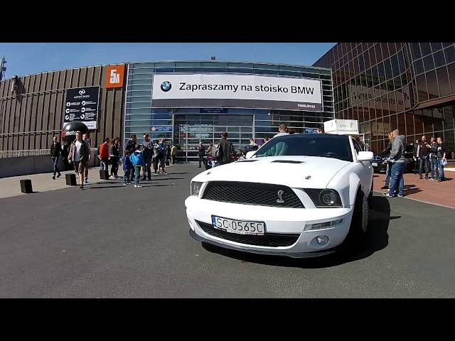 SCENES BAju Ford Mustang Shelby GT500