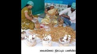getlinkyoutube.com-www.tholilvaaipugal.blogspot.com Button Kaalan Valarpu in Tamil   Mushroom Cultivation in tamil