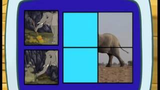 Go Diego | Les éléphants | NICKELODEON JUNIOR