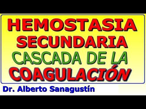Hemostasia secundaria: cascada de la coagulación