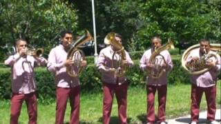 getlinkyoutube.com-Vranjsko Trubengo Oro 2016 Ekrem Mamutovic Orkestar