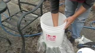 getlinkyoutube.com-urban fly maggot farm for chickens