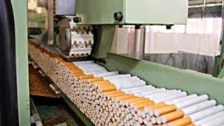 لماذا عمال مصنع روثمان لصنع السجائر لايدخنون ؟ استمع للسبب !