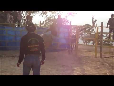 RANCHO SANTA CRUZ DEL AMIGO SAN PEDRO -Presentacion- Toros de Reparo