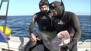 getlinkyoutube.com-Pedro Carbonell Tour 2011