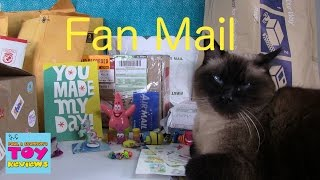 getlinkyoutube.com-December Cinco De Mailo | Fan Mail Opening Unboxing | PSToyReviews