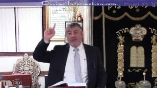 Rabbi Yosef Mizrachi - Send Your Bread Over The Water So That One Day You Will Find It