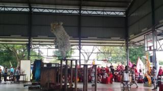 getlinkyoutube.com-5/6/16大古来華小舞獅赛