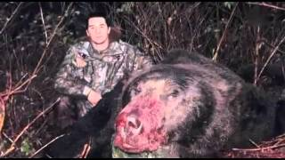 getlinkyoutube.com-MonsterQuest - Folge  Angriff der Bären Reportage deutsch Teil 1