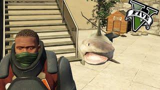 getlinkyoutube.com-GTA V PC MODS - Mi Mascota Es Un Tiburon