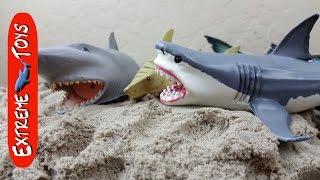 getlinkyoutube.com-Surprise Shark toys hidden in Kinetic Sand!