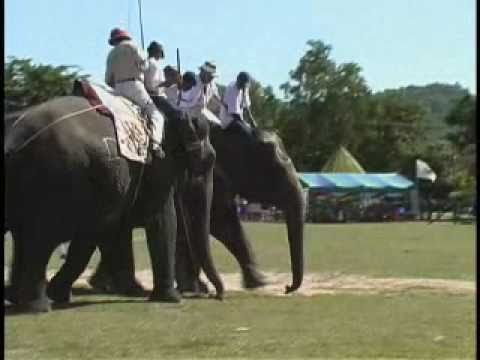International Elephant Polo Championship Pooper Scoopers travel vacation holiday hotel airline fun