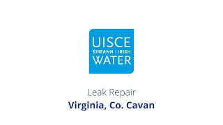 Video Thumbnail: #FixingLeaks | Virginia, Co.  Cavan