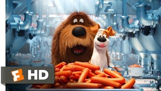 The Secret Life of Pets - Sausage Factory Scene (5/10) | Movieclips