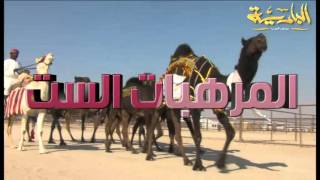 getlinkyoutube.com-مسيرة منقيات رجل الأعمال بخيت بن راشد بن مقبل آل فهيده المري (الظفرة 2015) قناة البادية